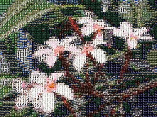 mosaic01.jpg